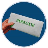Somatii publice
